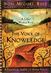 Self knowledge voice of knowledge